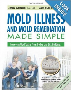 Mold Illness and Mold Remediation Made Simpl