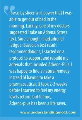 It was by sheer will-power that I was able to get out of bed in the morning. Luckily, one of my doctors suggested I take an Adrenal Stress text. Sure enough, I had adrenal fatigue. Based on test result recommendations, I started on a protocol to support and rebuild my adrenals that included Adreno-Plus. I was happy to find a natural remedy instead of having to take a pharmaceutical. It took 2-3 weeks before I started to feel normal again, but for me, Adreno-plus has been a life saver.