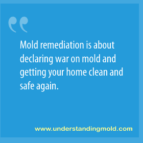 Mold remediation is about declaring war on mold and getting your home clean and safe again.
